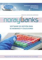 noraybanks_miniatura