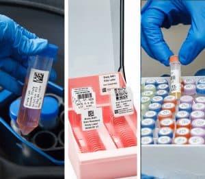 ELAB-5 pasos-triple de tubos