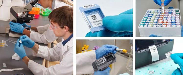 5 pasos para automatizar la identificación de muestras en su laboratorio